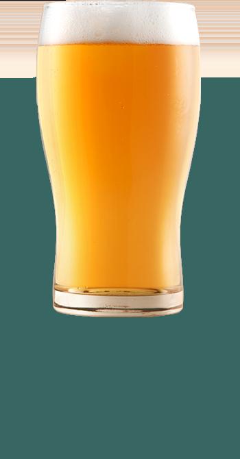 SalentOsteria - Birra Artigianale